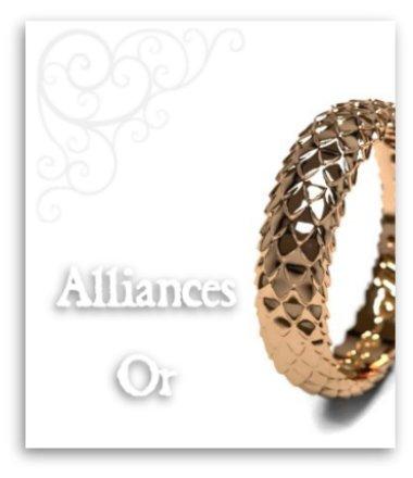Alliances or mariage fiancailles